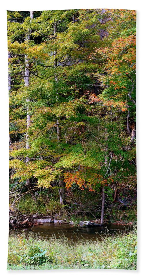 Tennessee Hand Towel featuring the photograph Tennessee Autumn Stream by Carol Groenen
