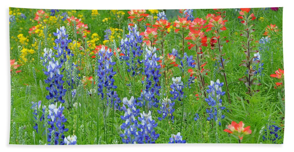 Wildflowers Bath Towel featuring the photograph Texas Wildflowers by Lynn Bauer