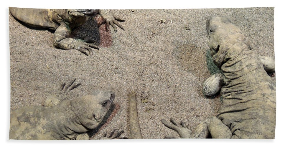 Outdoor Hand Towel featuring the photograph The Meeting by Munir Alawi