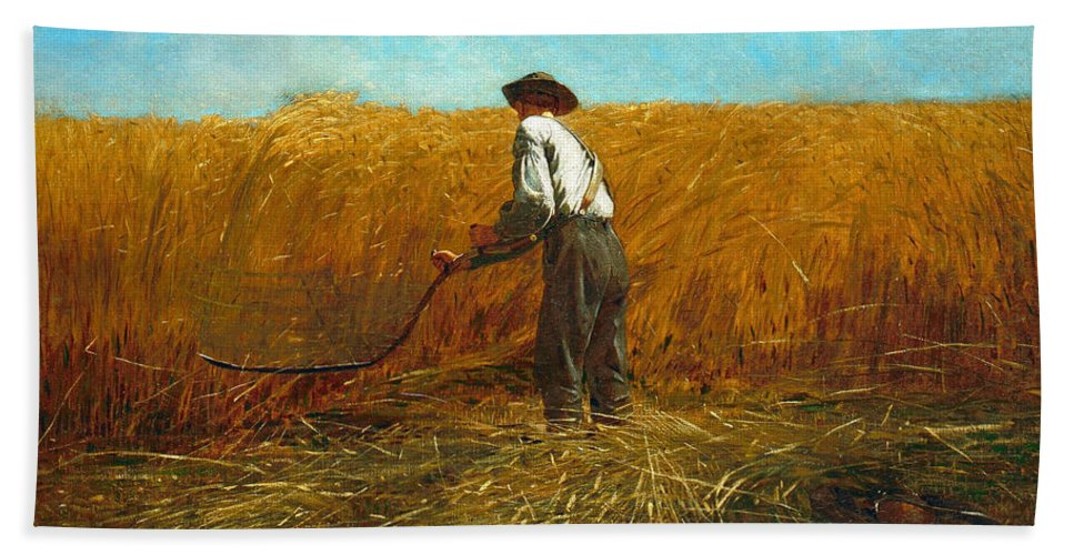 Winslow Homer Bath Sheet featuring the painting The Veteran In A New Field by Winslow Homer
