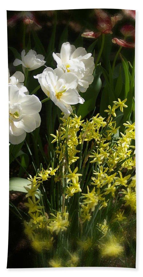 Flower Garden Bath Sheet featuring the photograph Three Of A Kind by Randy Pollard