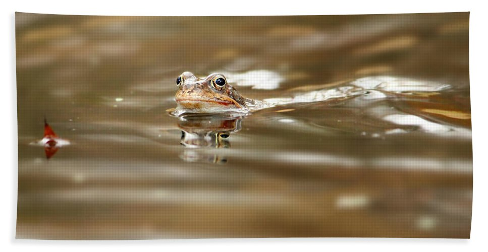 Toad Bath Sheet featuring the photograph Toad by Heike Hultsch