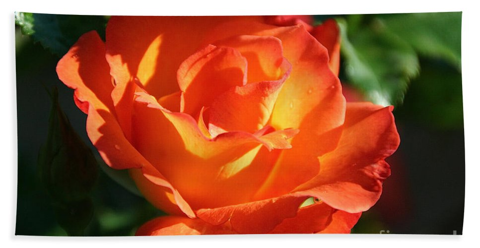 Flower Bath Sheet featuring the photograph Vibrancy Alive by Susan Herber
