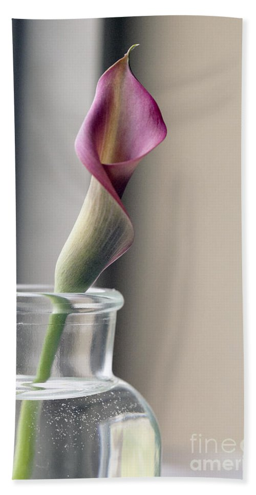 Lilly Hand Towel featuring the photograph Waiting by Amanda Barcon