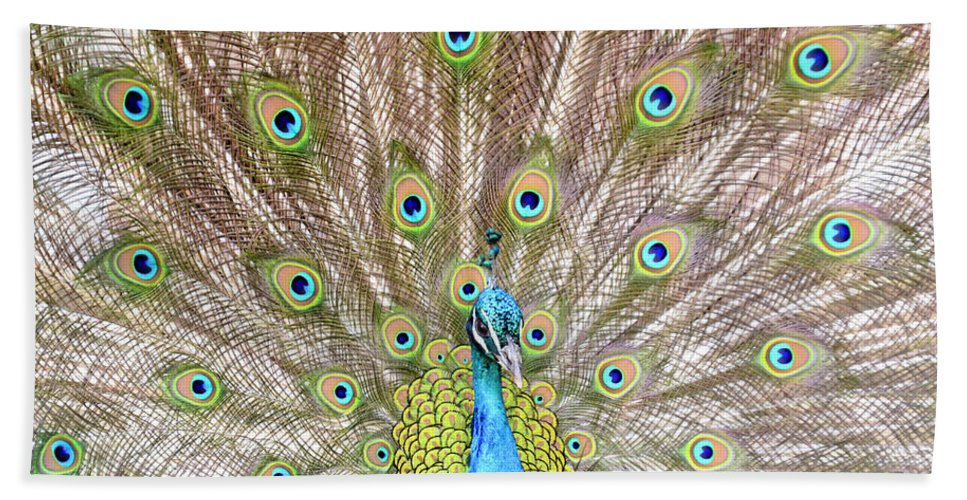 Male Peacock Bath Sheet featuring the photograph Peacock by Crystal Wightman