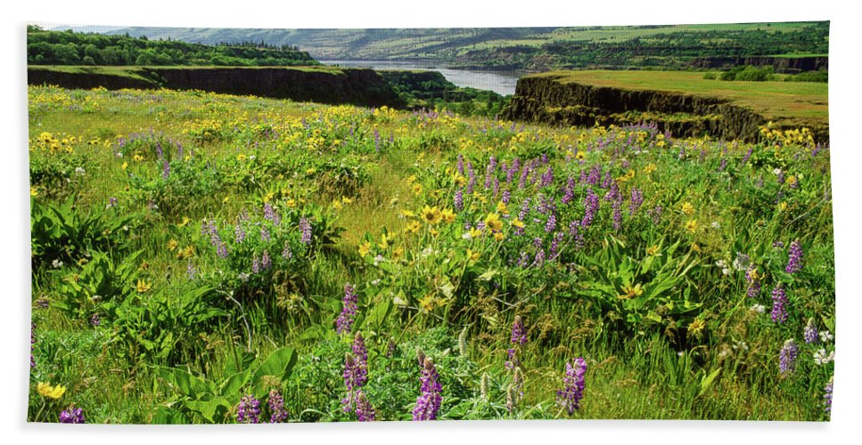 Photography Bath Sheet featuring the photograph Wildflowers In A Field, Columbia River by Panoramic Images