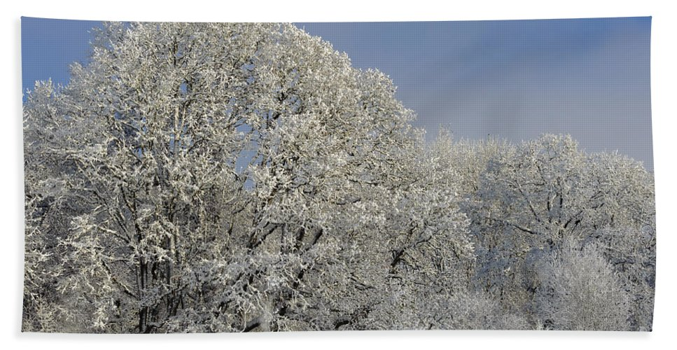 America Bath Sheet featuring the photograph Winter In Oregon by John Shaw