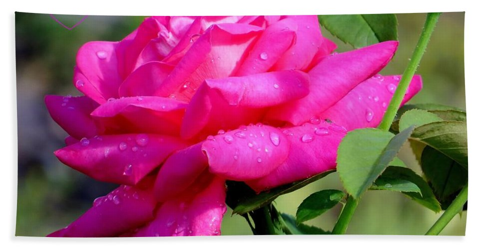Floral Hand Towel featuring the photograph With Love by Zina Stromberg