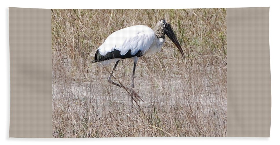 On Point Hand Towel featuring the photograph Wood Stork by Robert Floyd