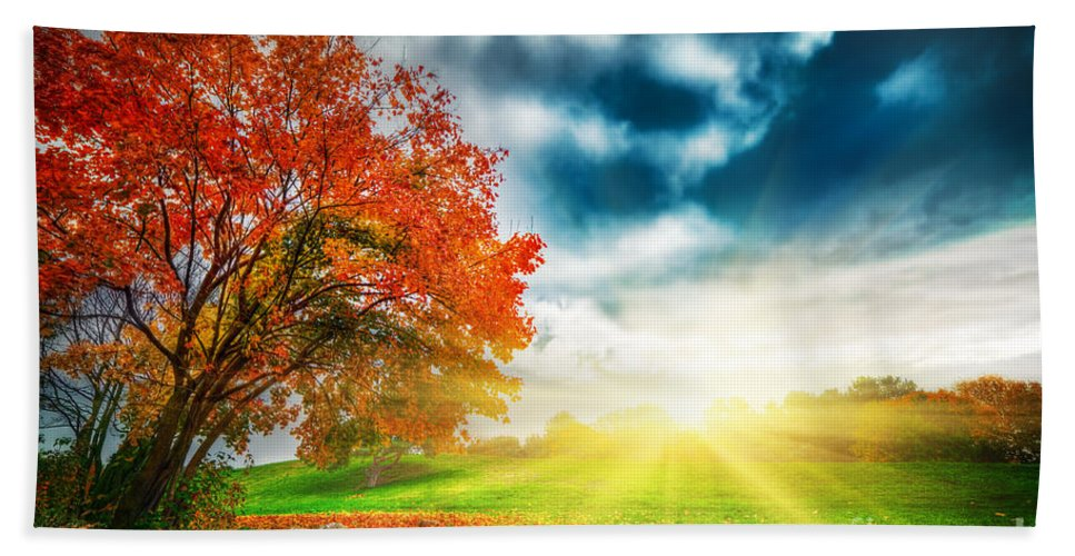 Autumn Hand Towel featuring the photograph Autumn Fall Landscape In Park by Michal Bednarek
