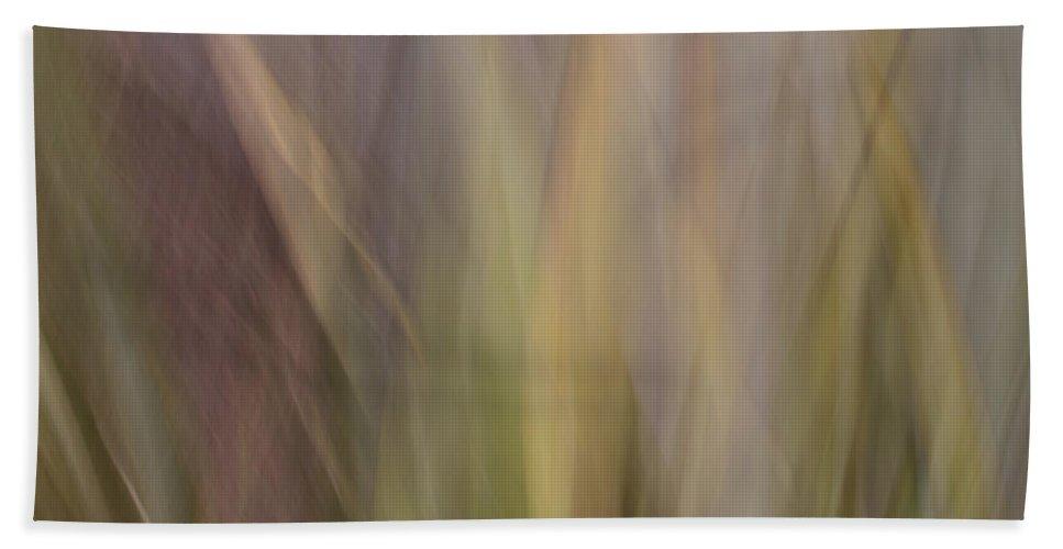 Motion Blur Bath Sheet featuring the photograph Blurscape by Dayne Reast