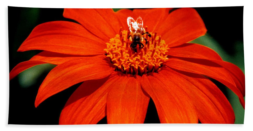 Original Hand Towel featuring the photograph Busy Bee by J D Owen