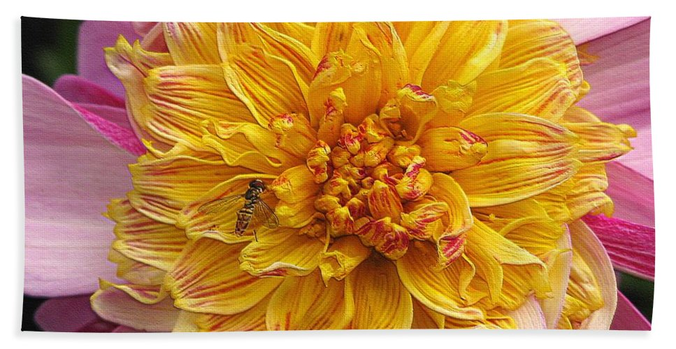 Dahlia Bath Sheet featuring the digital art Dahlia Named Lambada by J McCombie