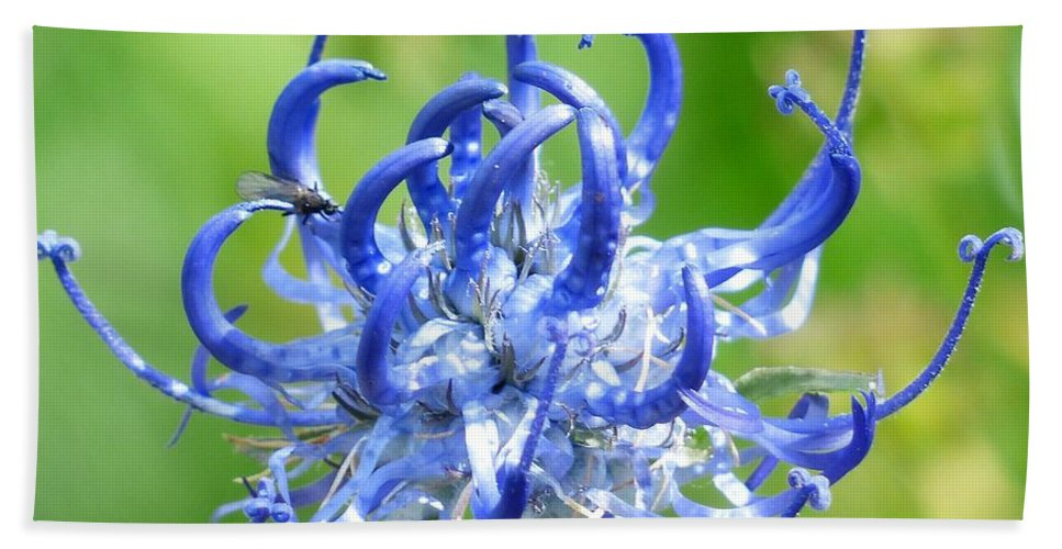 Flower Bath Sheet featuring the photograph Devils Claw Flower by FL collection