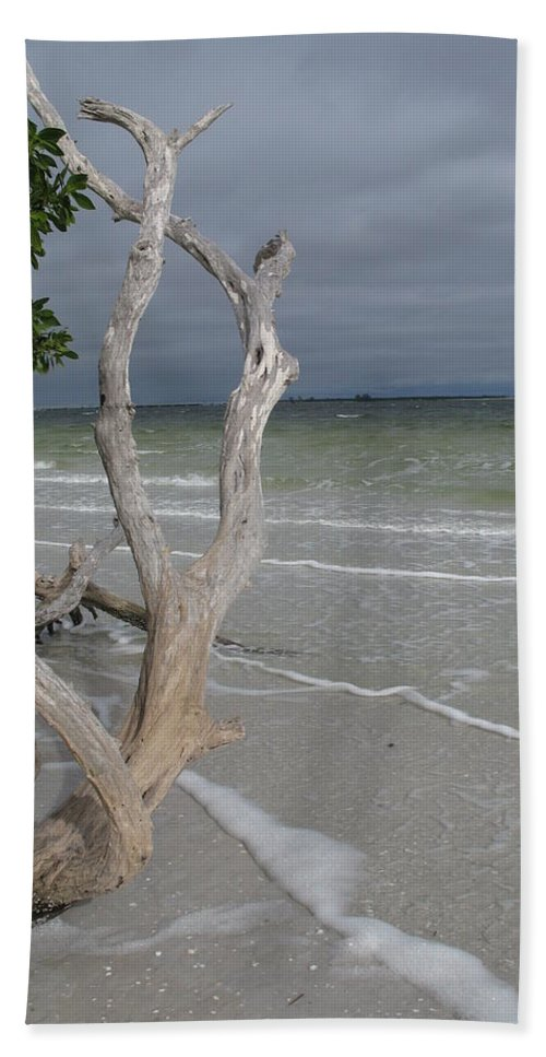 Beach Hand Towel featuring the photograph Driftwood On The Beach by Christiane Schulze Art And Photography