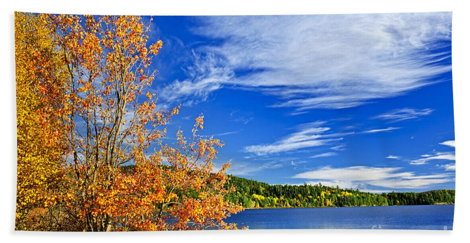 Lake Hand Towel featuring the photograph Fall Forest And Lake by Elena Elisseeva