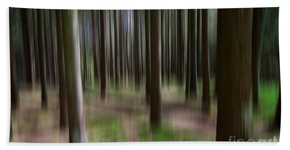 Green Forest Bath Sheet featuring the photograph Forest by Mats Silvan