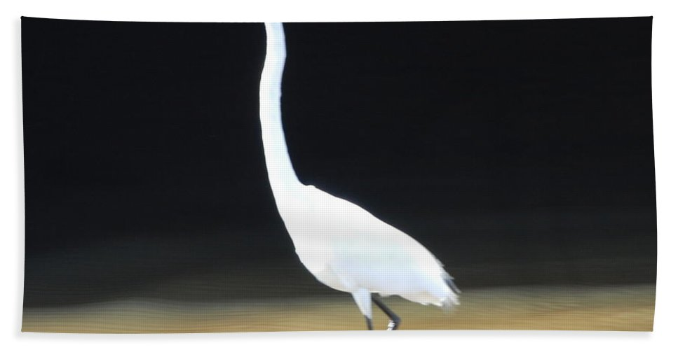 Fishing Hand Towel featuring the photograph Great White Heron by Robert Floyd
