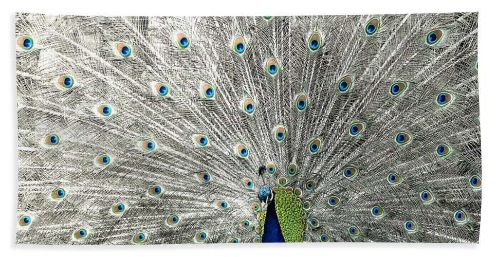 Peacock Bath Sheet featuring the photograph Peacock by Heike Hultsch