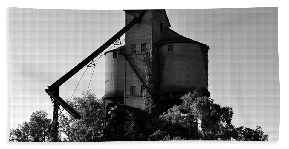 Fine Art Photography Hand Towel featuring the photograph Standing Tall by David Lee Thompson