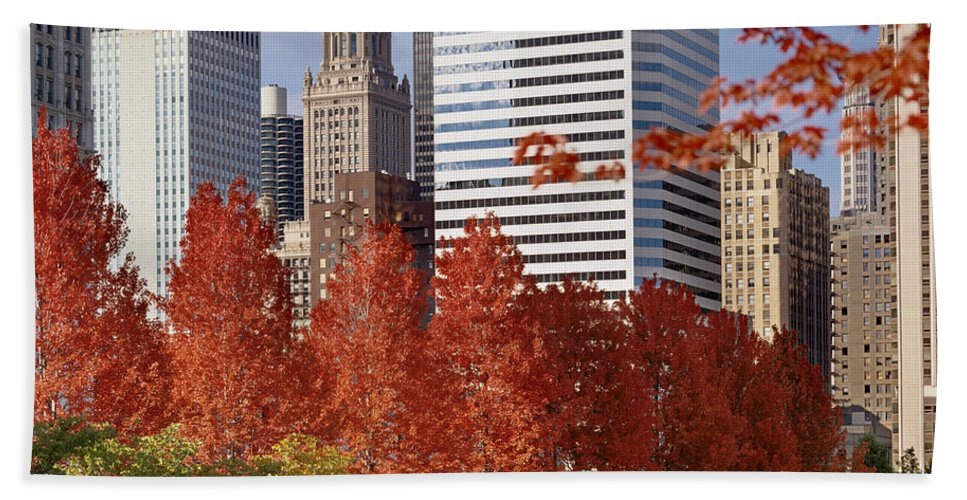 Photography Hand Towel featuring the photograph Usa, Illinois, Chicago, Millennium by Panoramic Images