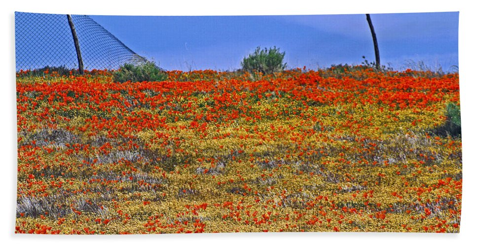 Poppies Hand Towel featuring the photograph Wildflowers by Howard Stapleton
