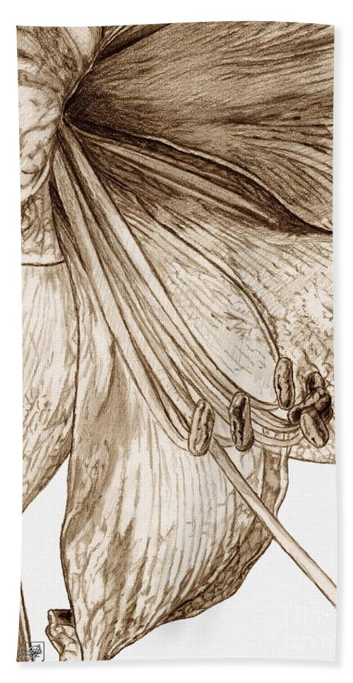 Mccombie Hand Towel featuring the drawing Amaryllis by J McCombie