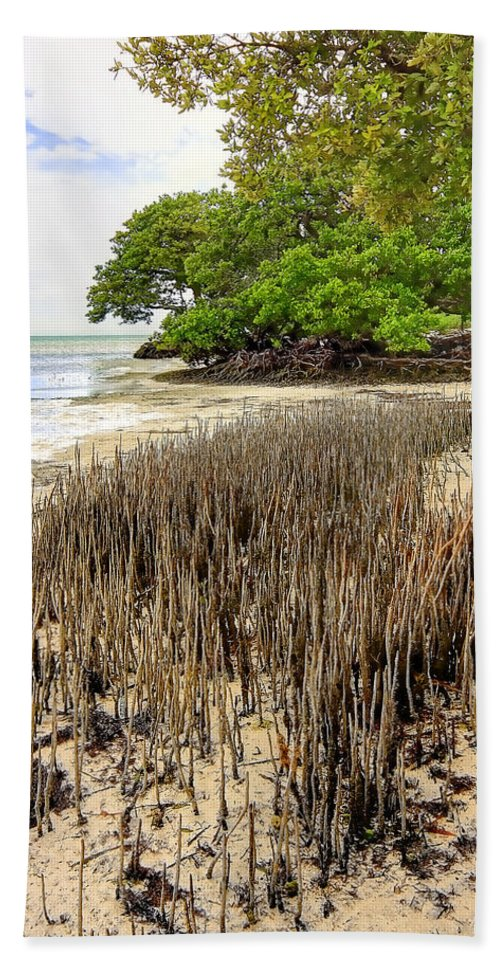 Florida Hand Towel featuring the photograph Anne's Beach-2 by Rudy Umans