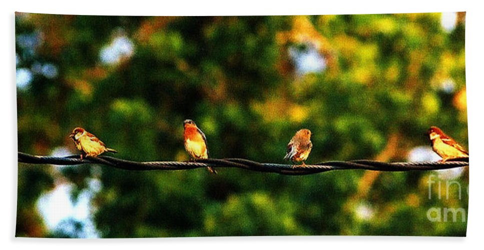 Color Photography Bath Towel featuring the photograph 4 Birds by Leon Hollins III