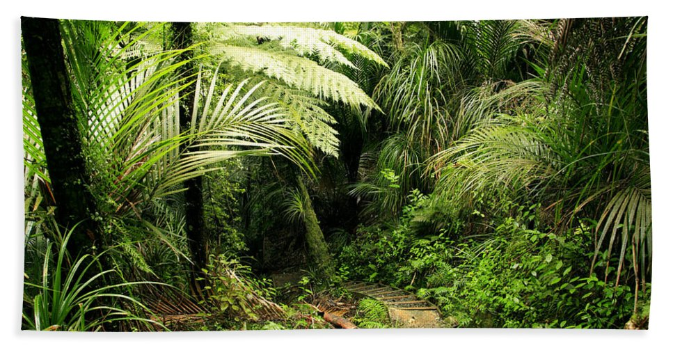 Jungle Bath Towel featuring the photograph Forest No1 by Les Cunliffe