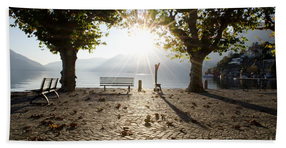 Bench Hand Towel featuring the photograph Bench And Trees by Mats Silvan