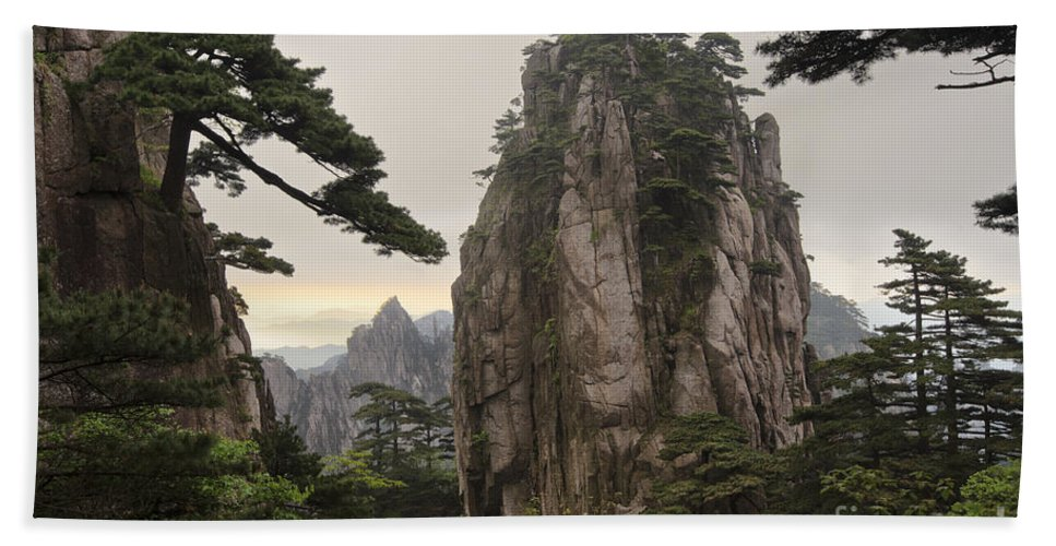 Asia Hand Towel featuring the photograph Chinese White Pine On Mt. Huangshan by John Shaw
