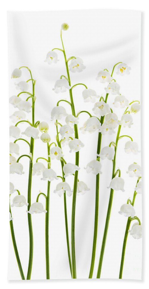 Flower Bath Towel featuring the photograph Lily-of-the-valley Flowers by Elena Elisseeva