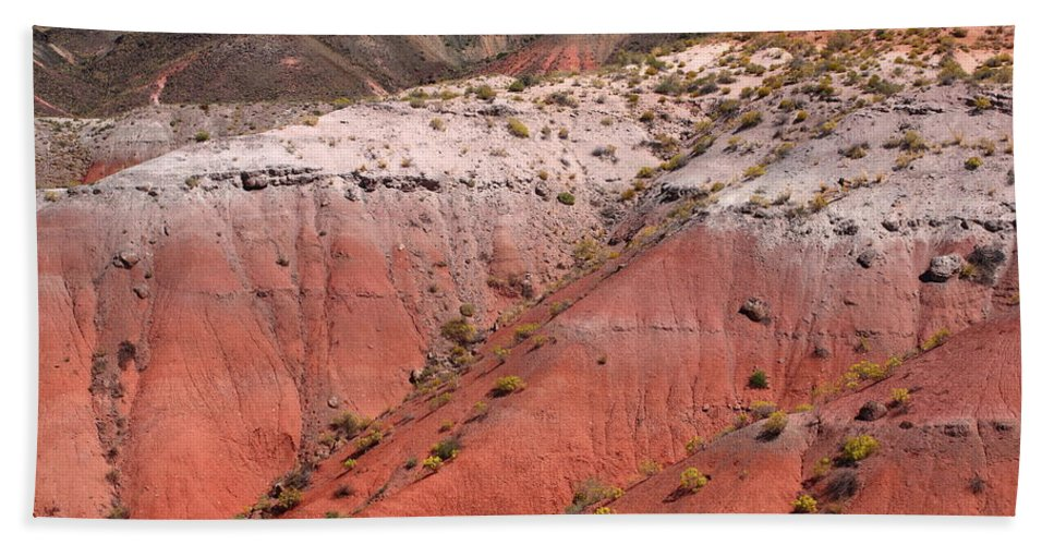 66 Hand Towel featuring the photograph Painted Desert by Frank Romeo