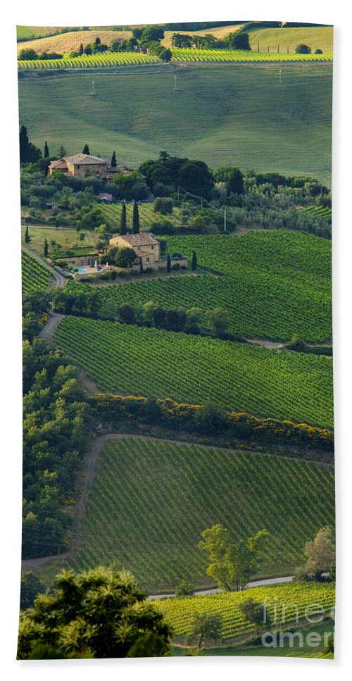 Vineyard Bath Sheet featuring the photograph Tuscany by Brian Jannsen