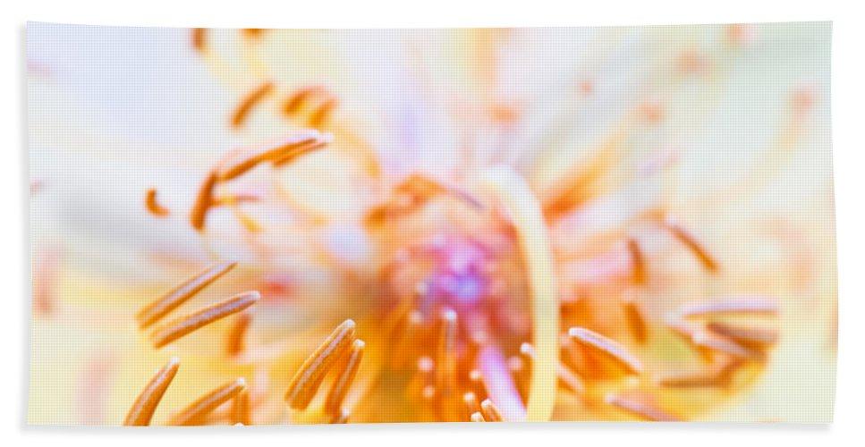 Interior Bath Sheet featuring the photograph Abstract Flower by U Schade
