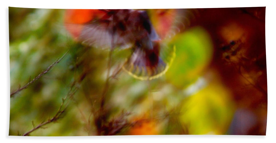 Autumn Hand Towel featuring the photograph Bohemian Waxwing by Jouko Lehto