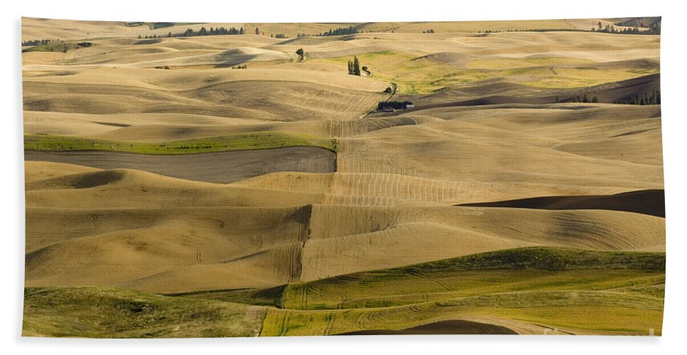 Field Hand Towel featuring the photograph Farm Fields by John Shaw