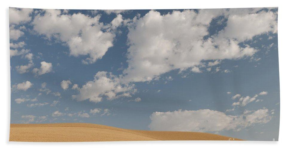 America Bath Sheet featuring the photograph Wheat Field by John Shaw