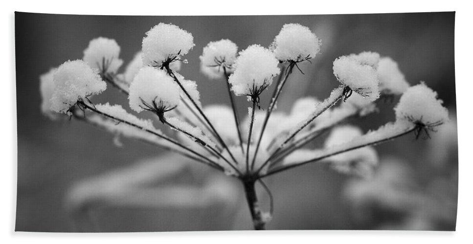 Nokia Hand Towel featuring the photograph Winter Flowers by Jouko Lehto