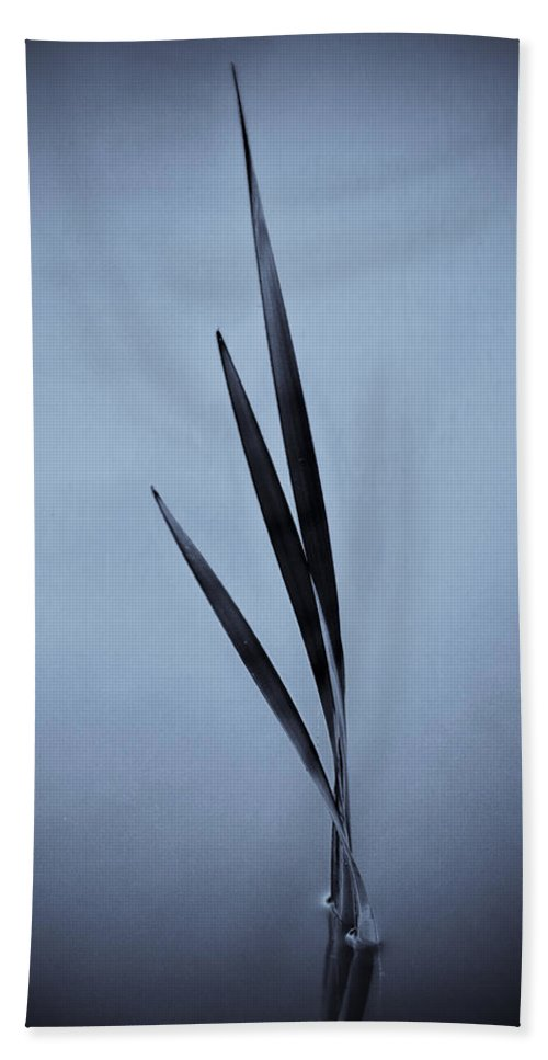 Blue Bath Sheet featuring the photograph Water Reed Art by David Pyatt