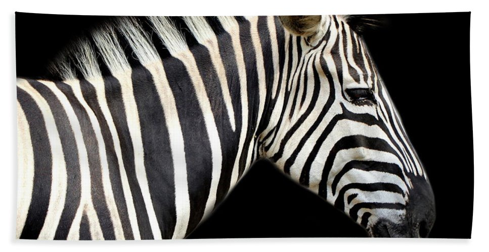 Zebra Bath Sheet featuring the photograph Zebra by Heike Hultsch