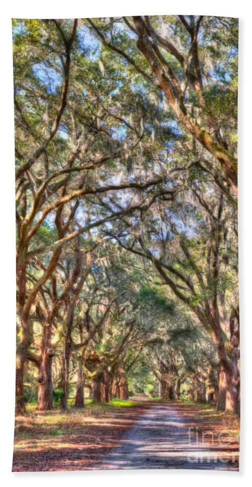 Allee Bath Sheet featuring the photograph Plantation Allee Of Oaks by Dale Powell