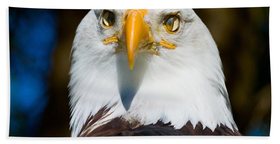 Bald Hand Towel featuring the photograph Bald Eagle by Les Palenik