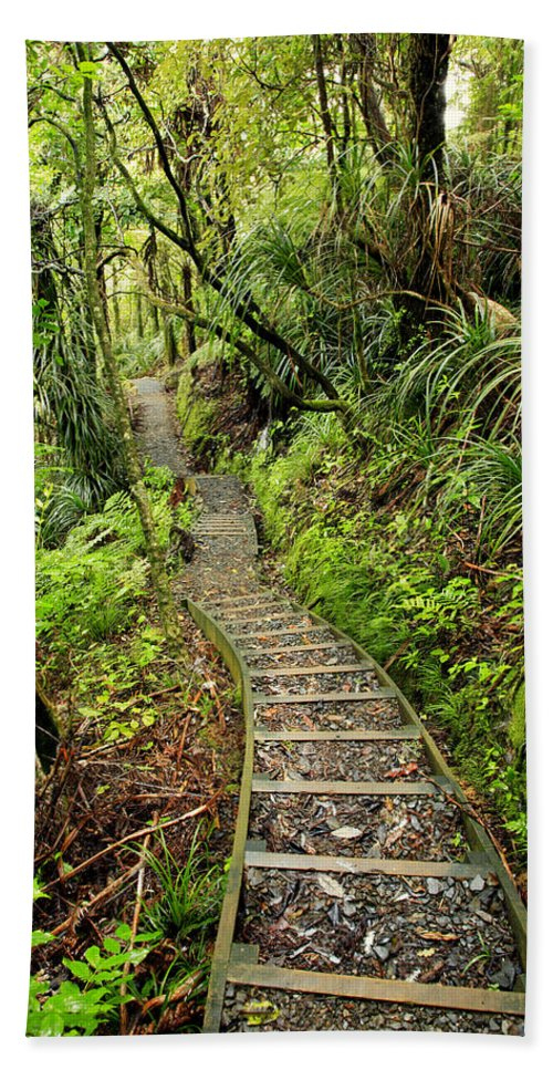 Bush Bath Towel featuring the photograph Forest Trail by Les Cunliffe