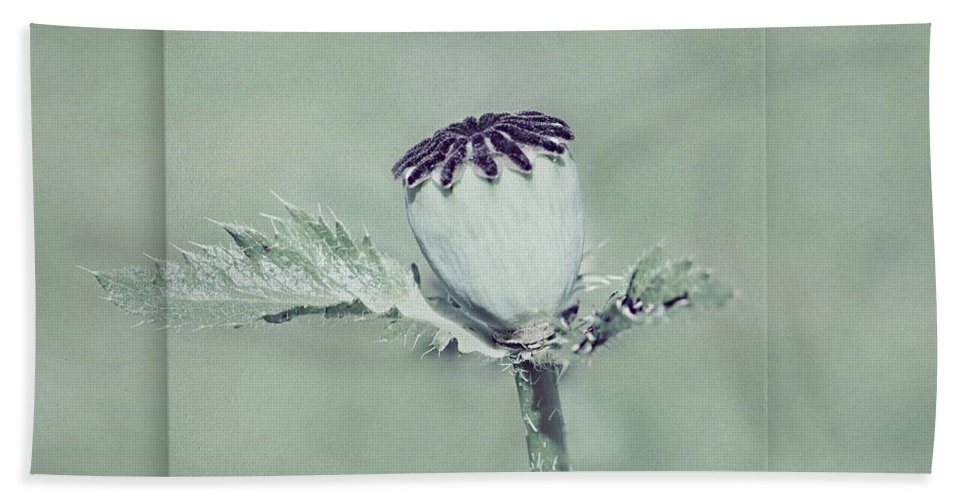 Poppy Bath Sheet featuring the photograph Poppy by Heike Hultsch