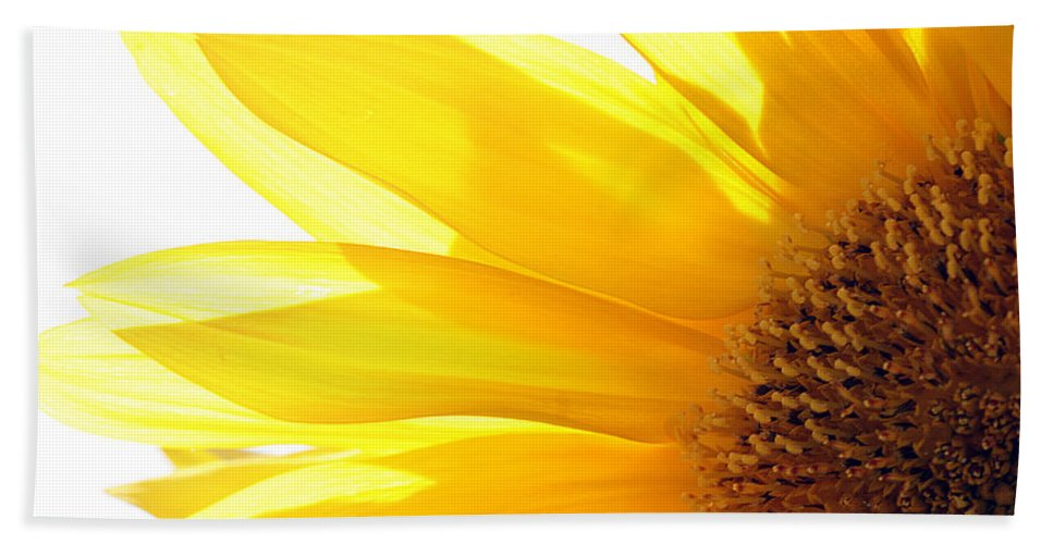 Sunflower Bath Sheet featuring the photograph Sunflower by Cindi Ressler
