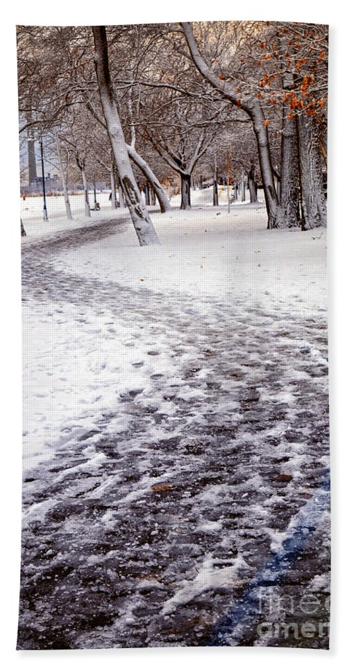 Winter Hand Towel featuring the photograph Winter Park by Elena Elisseeva