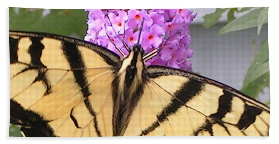 Swallowtail Bath Sheet featuring the photograph #859 D480 Swallowtail 2010.jpg by Robin Lee Mccarthy Photography