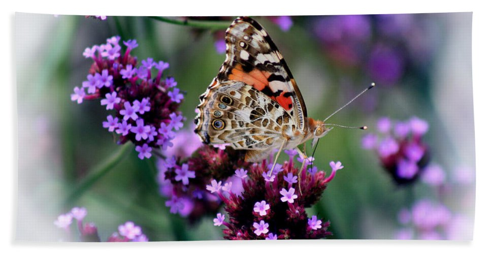 Bath Sheet featuring the photograph American Painted Lady Butterfly by Karen Adams